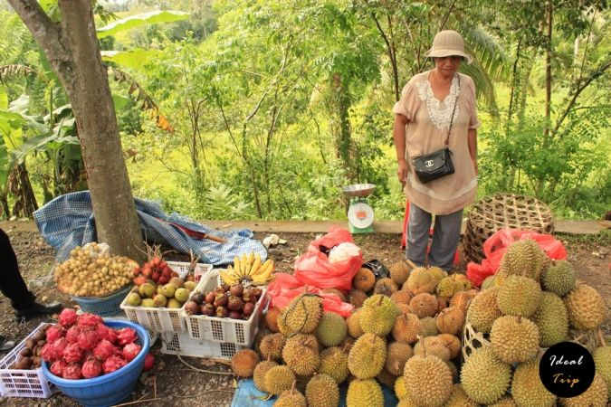 Продавщица фруктов на Бали