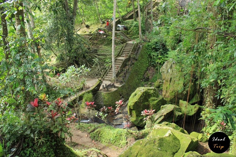 Сад у пещеры слонов