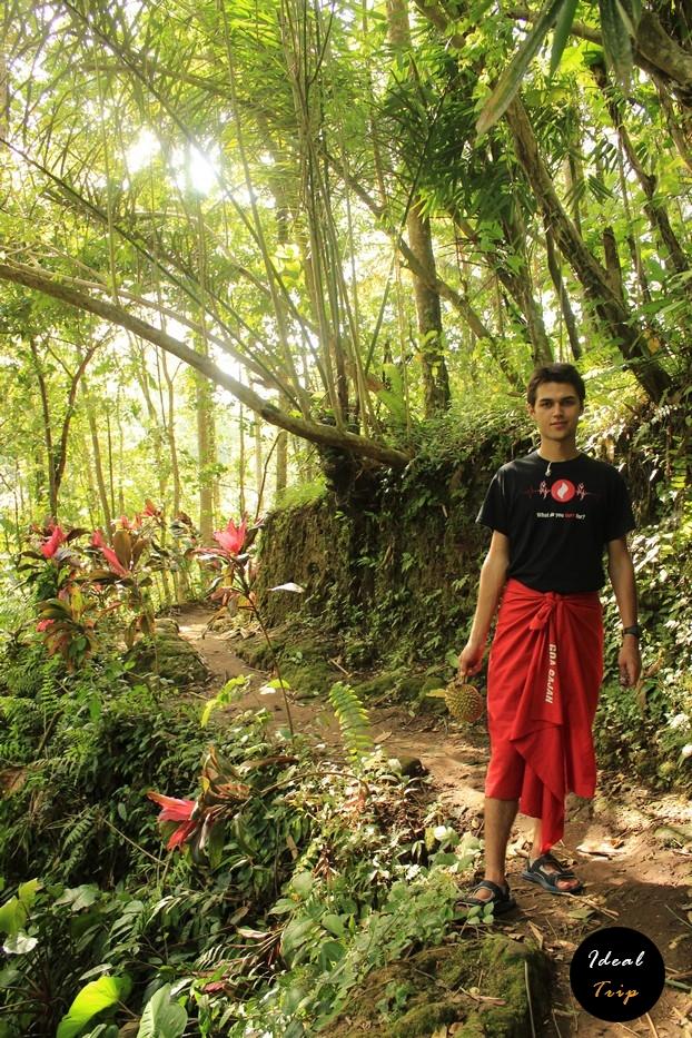 Станислав Матвеев в лесу Бали