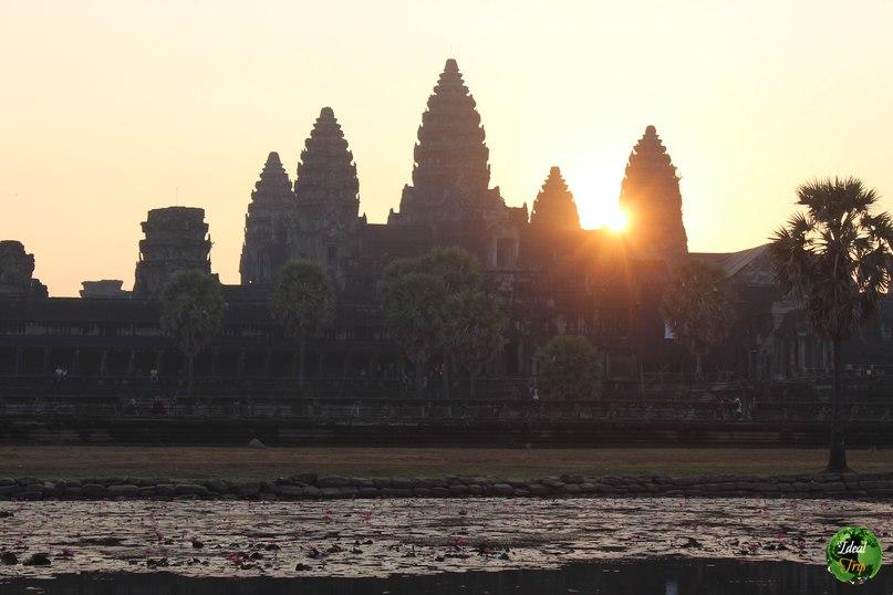 храм Ангкор на рассвете