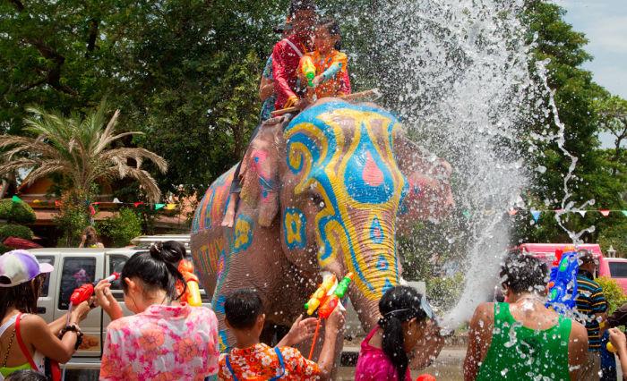 Новый год в Тайланде - слон