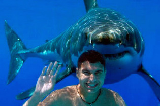 adventure-travel-insurance-shark