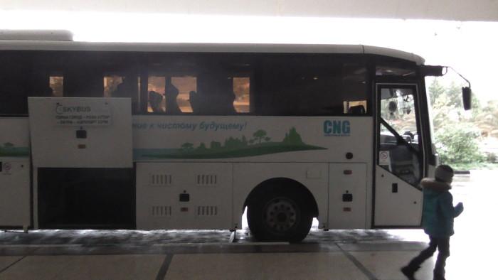 До Красной Поляны рейсовым автобусом