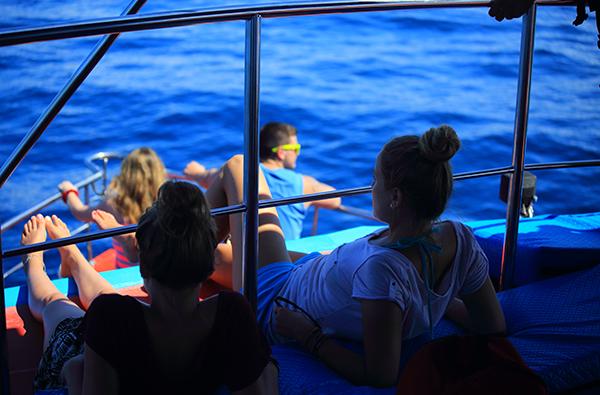Экскурсия - просмотр китов