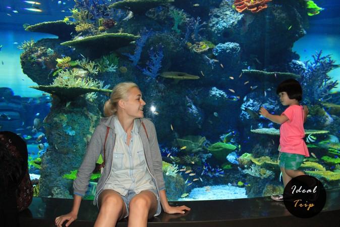 Кристина Эндлесс в океанариуме Сингапура
