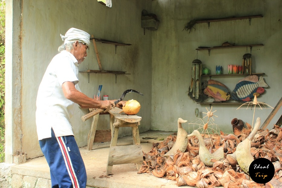 Балиец раскалывает кокос
