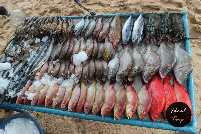 Свежая рыба, которую поймали ранним утром