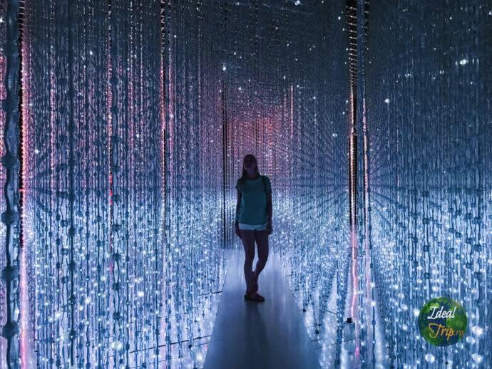 """""""Future world"""" в музее Искусства и Науки"""
