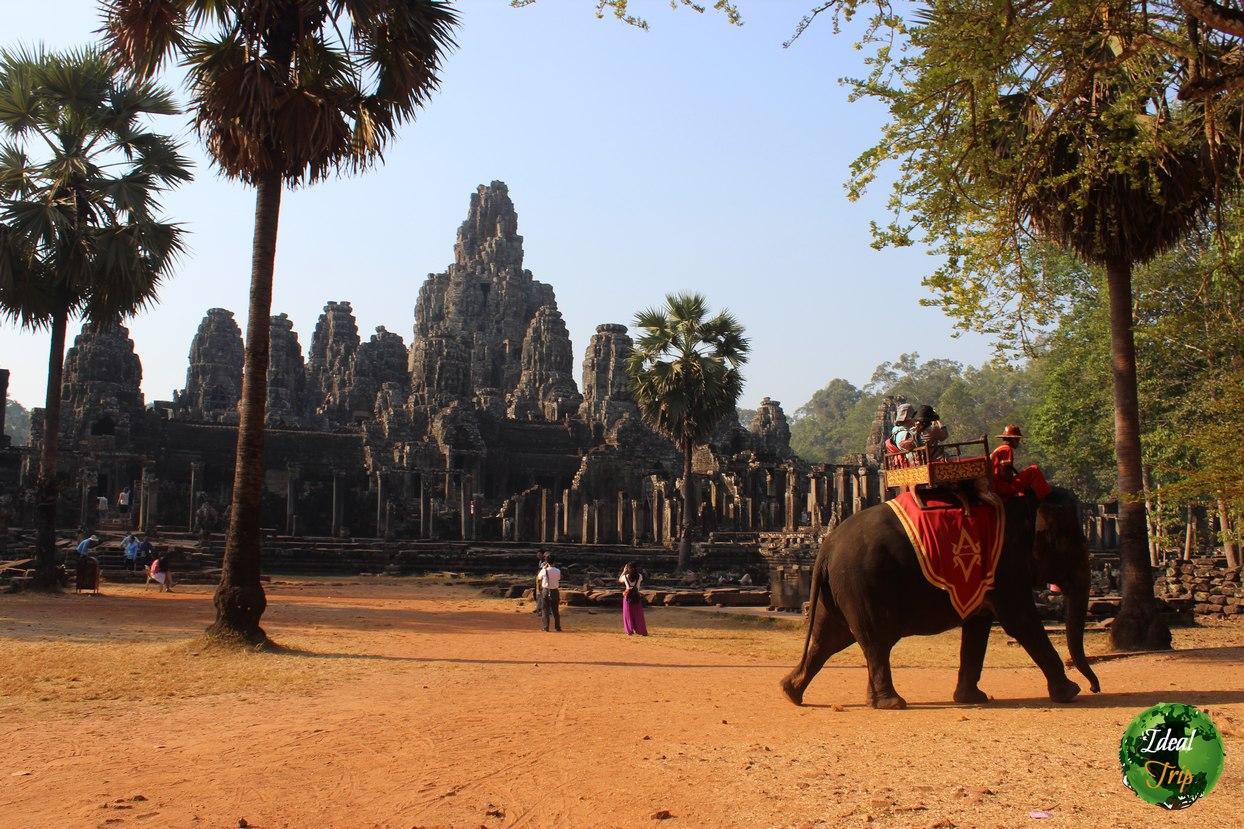 Ангкор Ват и слон