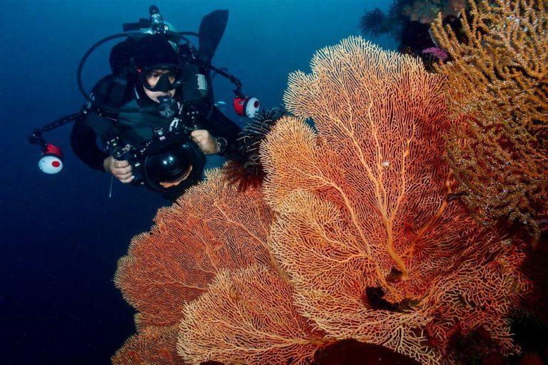 Подводный риф в Моолболе
