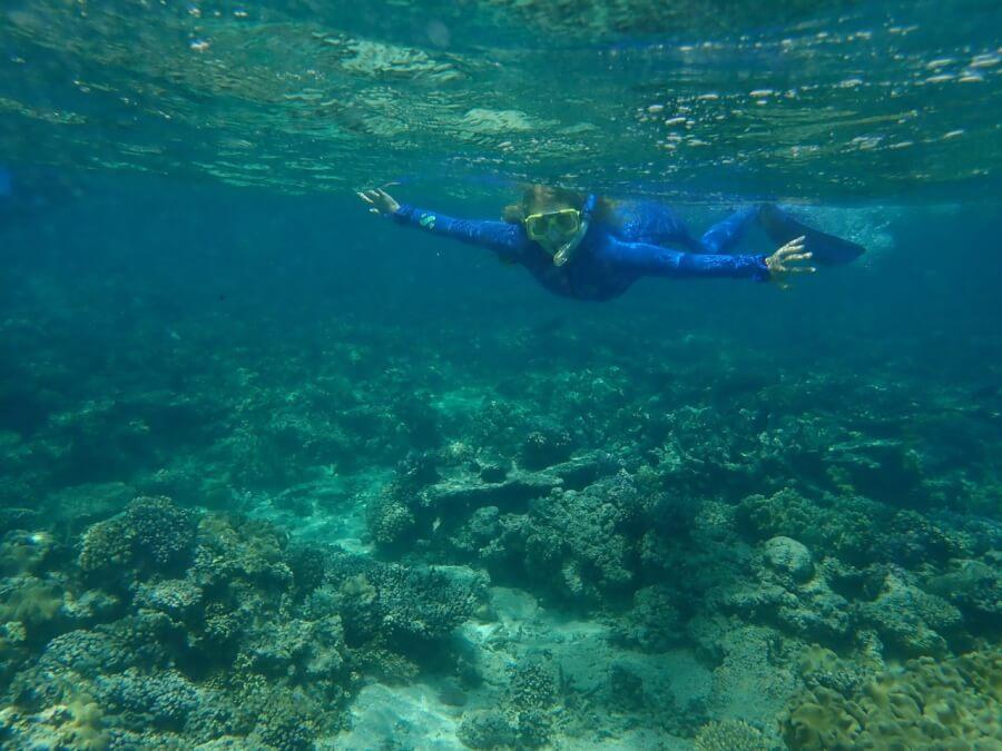 Ныряние с маской на Большом Барьерном рифе, штат Квинсленд, Австралия